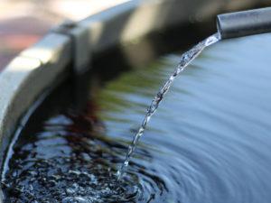 consultoria_ambiental_vectorambiental_mata_aigua_2