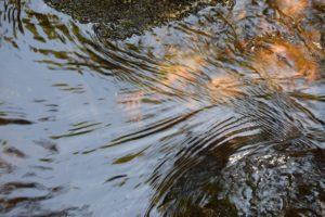 consultoria gestión agua